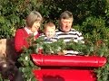 watch he video of SANTAS REINDEER AND SLEIGH RIDES FOR HIRE