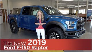 New 2019 Ford F-150 Raptor Elk River, Coon Rapids, Minneapolis, St Paul, St Cloud, MN | Review