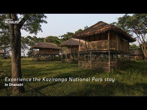 Experience wilderness at this Kaziranga National Park stay in Dhansiri