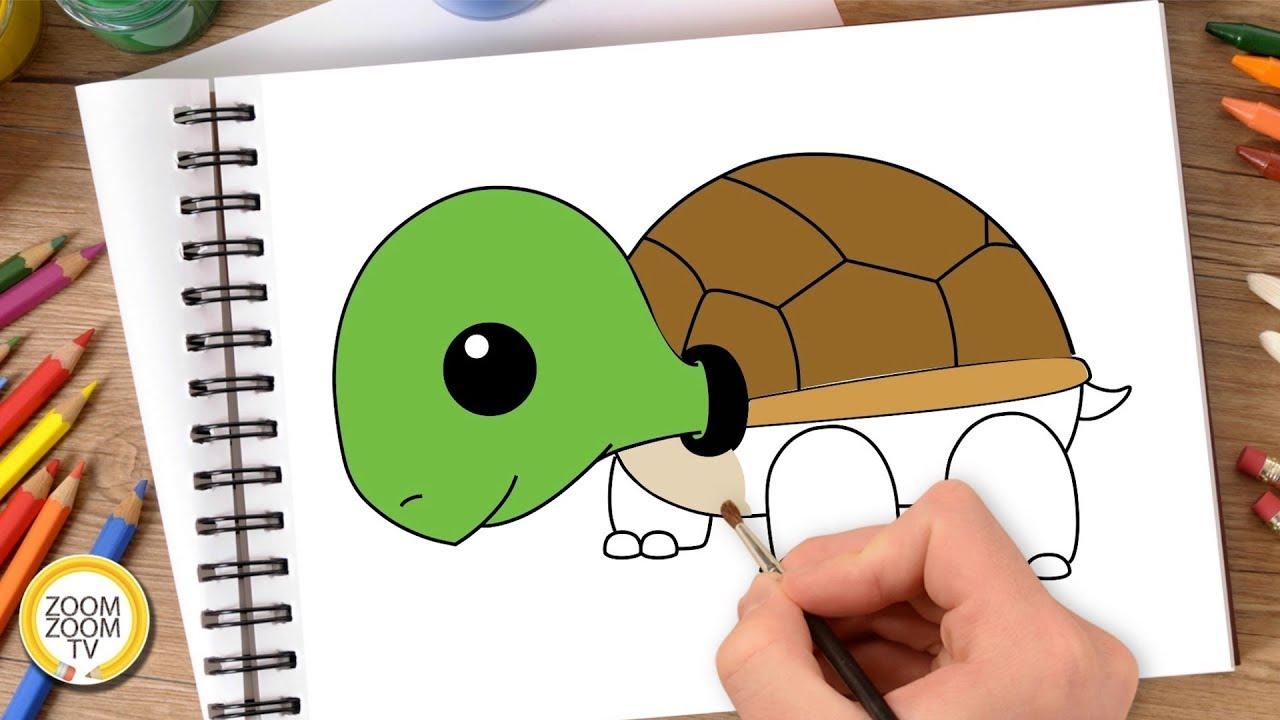 Hướng dẫn cách vẽ CON RÙA - Tô màu con Rùa - How to draw Turtle