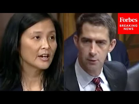 'Really Is Inappropriate': Tom Cotton Grills Biden Nominee Jennifer Sung Over Controversial Letter