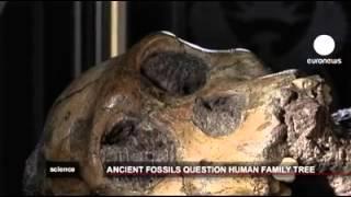 İki milyon yıllık iskelet bulundu