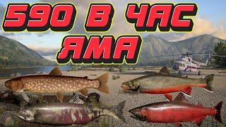 590 за час Мальма Кунджа Кижуч Кета р Яма ФАРМ Русская Рыбалка 4