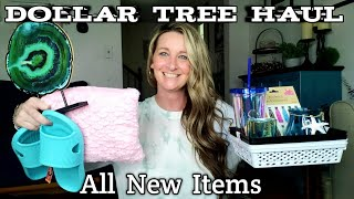 Dollar Tree Haul| All New Items| DIY Ideas | Trying Products | May 10