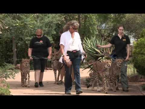 Namibia TV AD 1