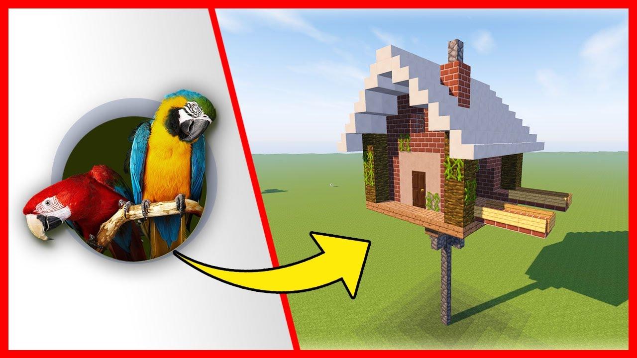 Come costruire una semplice casa per i pappagalli for Modo semplice per costruire una casa