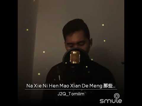 Na Xie.ni Hen Mao Xian De Meng By Jj Lin Original Song