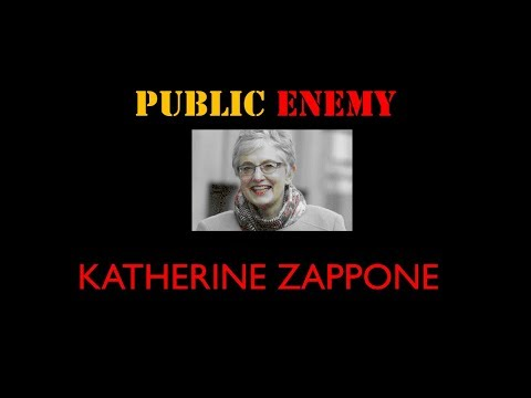 PUBLIC ENEMY KATHERINE ZAPPONE