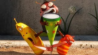 LARVA - PARTY POP | Cartoon Movie | Cartoons For Children | Larva Cartoon | LARVA Official