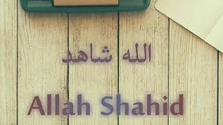 Lyric Lirik كلمات Allah Shahid Tamer Hosny and team