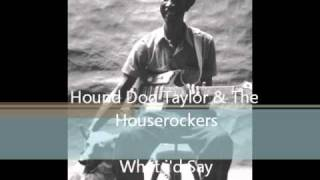 Hound Dog Taylor & The Houserockers - What i
