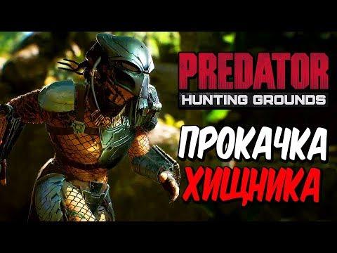 Predator: Hunting Grounds  — УБИВАЕМ И ПРОКАЧИВАЕМ ХИЩНИКА! ЧЕЛОВЕК ПРОТИВ ХИЩНИКА!