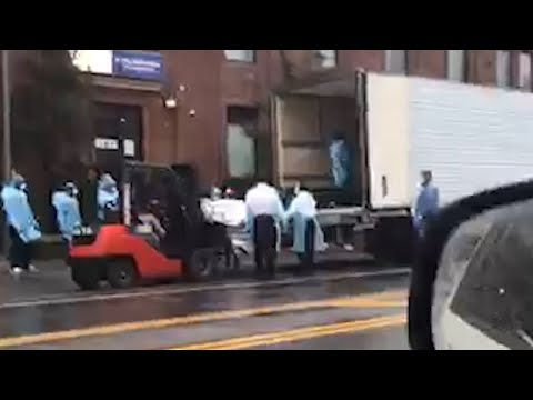 'This is for real!': Shocking video shows body bags being forklifted into lorry in New York