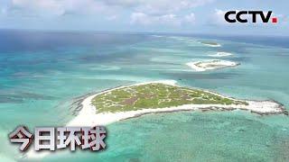 [今日环球] 海南三沙:今年首次拍到绿海龟上岸产卵 | CCTV中文国际