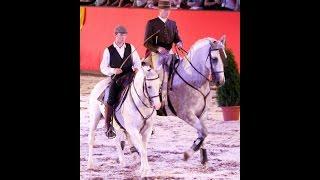 Marbach Classics 2015 - Working Equitation