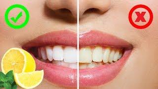 TOP 10 Zázraků, které umí citron
