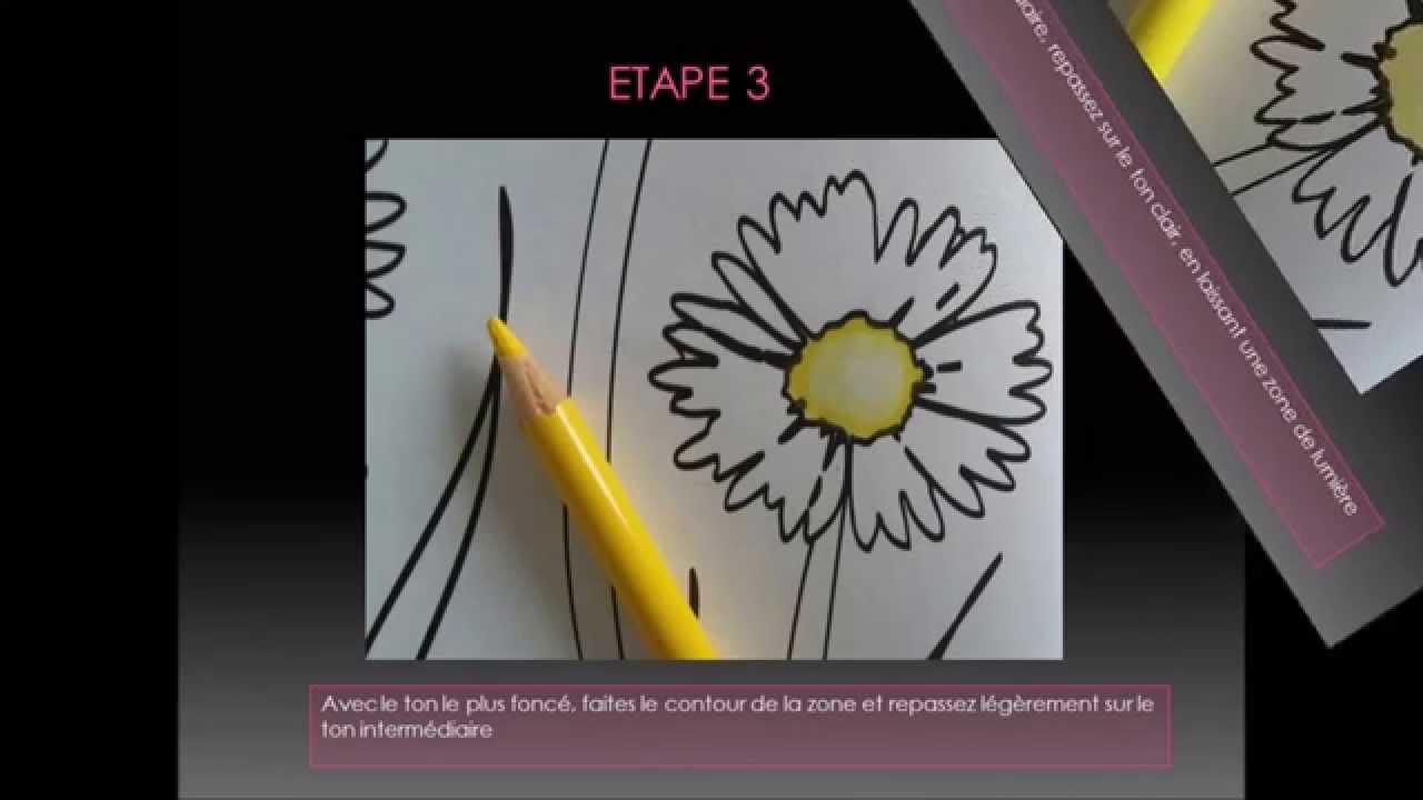Comment Faire Un Coloriage Anti Stress.Tuto Coloriage Anti Stress Art Therapie Faire Un Degrade Aux Cdc Sur Une Fleur