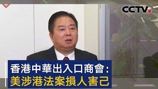 香港中华出入口商会会长林龙安:美涉港法案损人害己 | CCTV