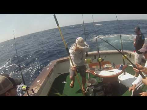 2016 Risky Business Offshore Fishing May