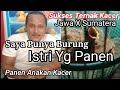 Sukses Ternak Kacer Jawa X Sumatera  Mp3 - Mp4 Download