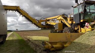 Lohnunternehmen A. Jeromin in der Maisernte (die Mais-Maus im Einsatz)