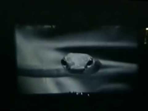 Nine Inch Nails - 1994-12-08 - Madison Square Garden  - [Complete Concert] - [Deshaked/Remastered]