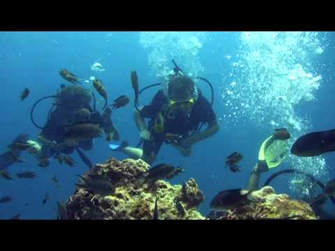 Scuba Diving in the Perhentian Island - Malaysia