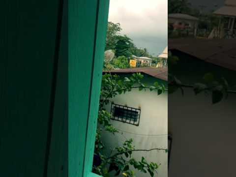 Panama Bocas Del Toro - FACT @ Twin Fin Hostels
