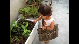 GARDENING CLASSES DELHI phone 9910517789