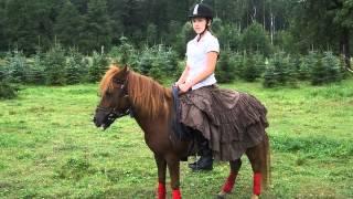 Szkółka Jeździecka Konna Tęcza