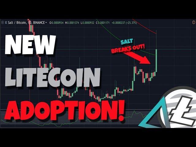 UPDATE: New Litecoin Adoption; Retail Investors - Salt Breaks Out!