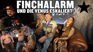 FINCHALARM - UND DIE VENUS ESKALIERT!    l VLOG LUCY CAT