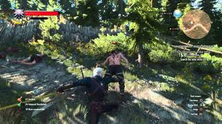 The Witcher 3: Wild Hunt What a way to go