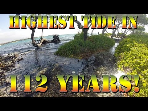 Highest Tide in 112 Years! The King's Tide In Hawaii - Fishing The King