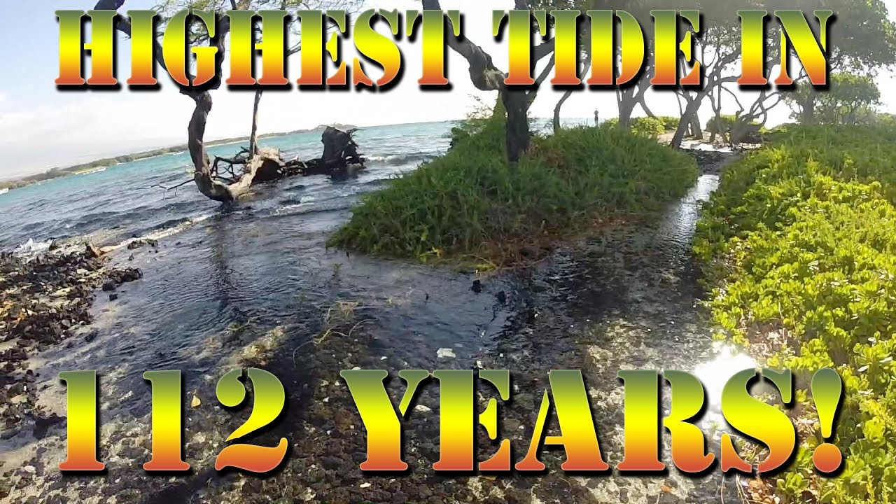 Highest tide in 112 years the king s tide in hawaii for Hawaii tides for fishing