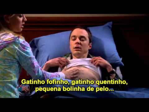 GATINHO FOFINHO