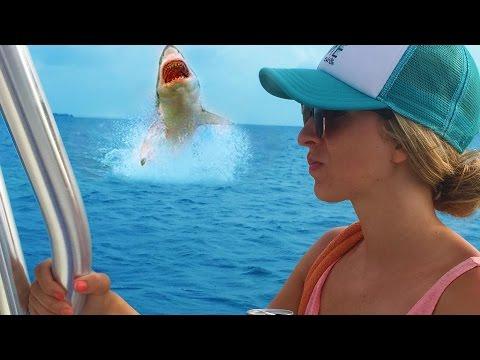 Christin Reels In A Shark | Living the Salt Life