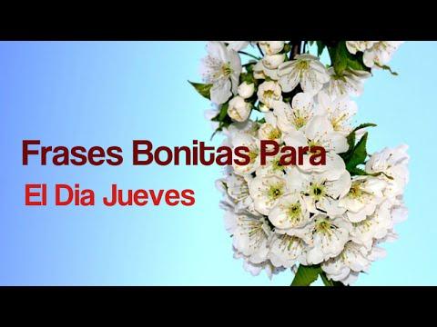 Frases Bonitas Para El Dia Jueves Felizjueves Youtube