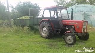 Typowe zdjęcia rolnicze