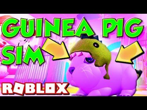 Roblox Guinea Pig Simulator