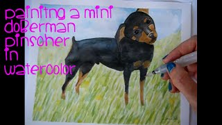 DRAWING A DOG - REALISTIC - MINI DOBERMAN PINCHER DOG - from start to finish