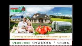 НОВИНКА! Сибирская теплица, купить теплицу из поликарбоната, ОТЗЫВЫ в Беларуси(, 2014-08-18T02:37:47.000Z)