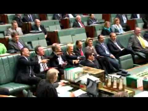 Celebrations as Lower House approves climate bills
