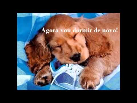 Bom Dia Com Cachorrinhos Youtube