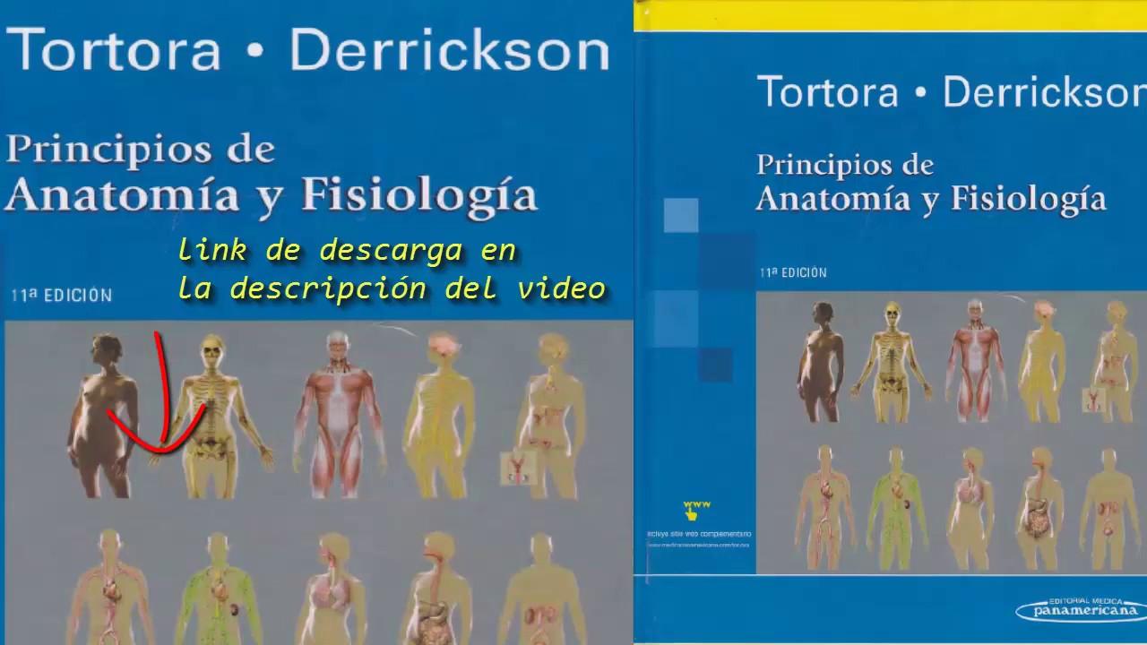 Principios de Anatomía y Fisiología - 11a edición (Tortora ...