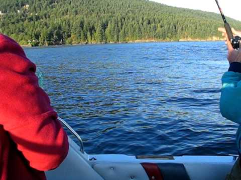 King Salmon Bellingham Bay 2007