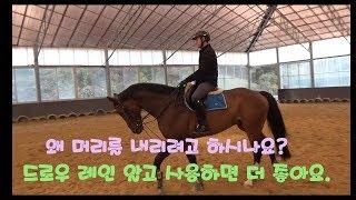 드로우레인? 말 움직임에 대해 더 알고 사용하면 좋습니다.
