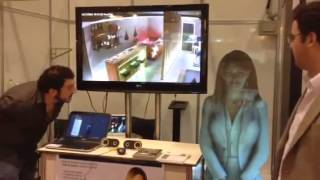 Virtual Assistant Denise in a Holographic Projection for Home Automation
