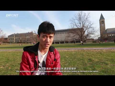 Cornell University: the Youngest Ivy League School