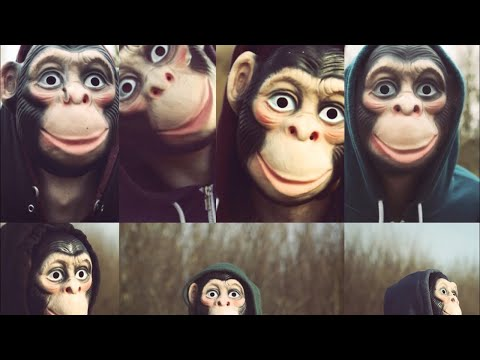 PHILHARMONGREL - 100th monkey
